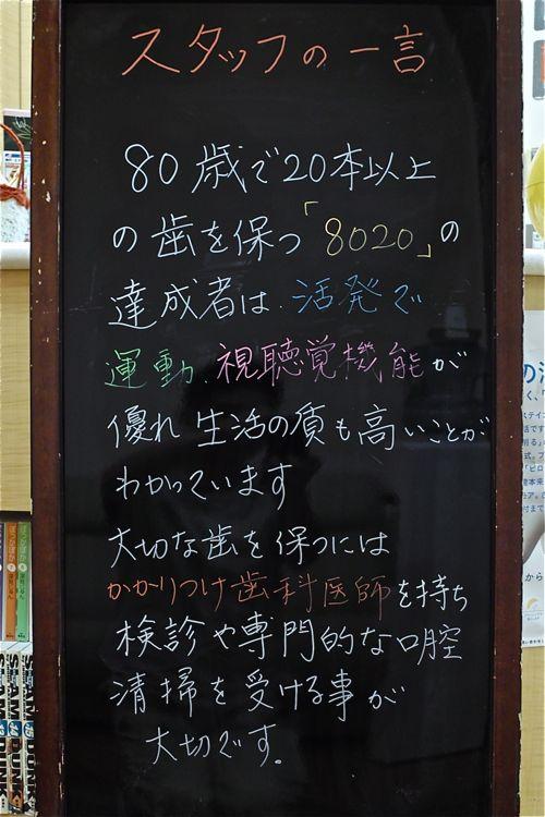 Sdim0013